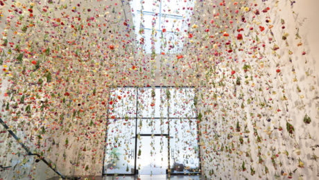 Casa Captivating Blog | What Do 8,000 Blooms Look Like?